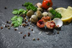Dîner gastronomique cru frais d'océan de coques de fruits de mer de mollusques et crustacés avec des herbes et des épices images stock