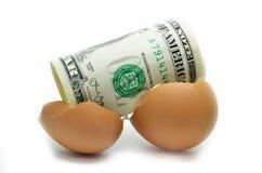 Dólar americano em ovo rachado Imagens de Stock