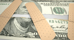 Dólar americano rasgado nutrido Imagens de Stock