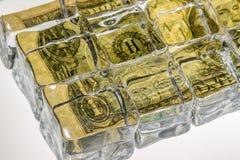 Dólar congelado del dinero en circulación de la zona Fotografía de archivo libre de regalías