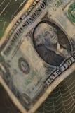 Dólar da moeda no perigo da aranha foto de stock