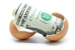 Dólar de EE. UU. en el huevo agrietado Imágenes de archivo libres de regalías