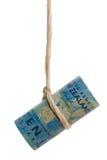 Dólar de Nueva Zelandia que cuelga Imagen de archivo libre de regalías