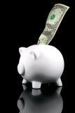 Dólar do banco Piggy refletido Fotografia de Stock