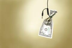 Dólar em um laço do cabo Fotos de Stock