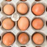 Dólar y huevos en un fondo blanco imagenes de archivo