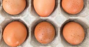 Dólar y huevos en un fondo blanco fotografía de archivo