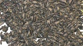 Dólares amarrotados que caem, transição video, metragem conservada em estoque ilustração royalty free