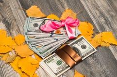 Dólares americanos como um presente, um papel de embrulho bonito Imagens de Stock