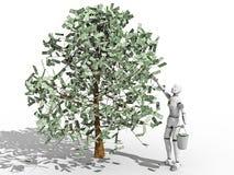 Dólares da árvore ilustração royalty free