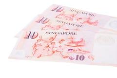 Dólares das cédulas de Singapura 10 SGD isolados no backgroun branco Foto de Stock Royalty Free