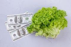 Dólares das cédulas e alface fresca Foto de Stock Royalty Free