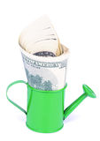 Dólares de crecimiento Fotografía de archivo libre de regalías