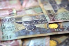 Dólares de Namíbia Foto de Stock