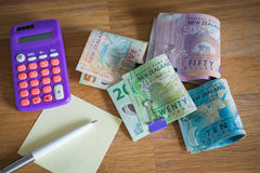 Dólares de Nueva Zelanda/el concepto del presupuesto dom'estico imagenes de archivo