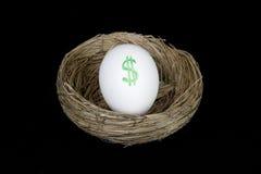 Dólares do ovo de ninho da aposentadoria Foto de Stock Royalty Free