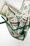 Dólares en red de pesca Imagen de archivo libre de regalías