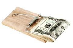 Dólares na armadilha do rato Fotografia de Stock