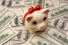 Dólares piggy-wiggy e muitos cem Fotografia de Stock