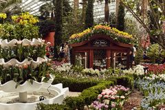 Dôme de fleur aux jardins par la baie photos libres de droits