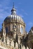 Dôme de la cathédrale de Salamanque Image stock