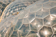 Dômes en plastique abstraits Images stock