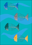 död fisksimning Royaltyfria Bilder