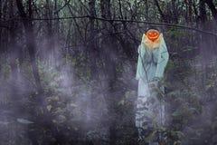 Död flicka med Stålar-nolla-lyktan i en dimmig skog på natten royaltyfria foton