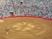 Död i traditionell spansk corrida royaltyfria bilder