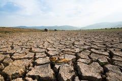 Död kris för global uppvärmning för torrt land för fisk Royaltyfria Foton