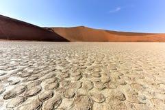 död namibia vlei Arkivfoto
