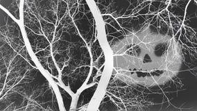 Död träd och skugga av en ond framsida i inverterad färgeffekt Arkivfoto