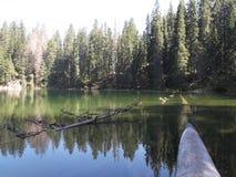 Död-träna i Zminje sjön, den Durmitor nationalparken Fotografering för Bildbyråer