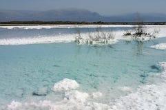 döda deposits saltar havswhite Royaltyfri Foto