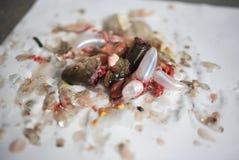 Döda fiskhuvud Royaltyfri Foto