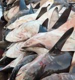 Döda hajar på en fiskmarknad Arkivbild
