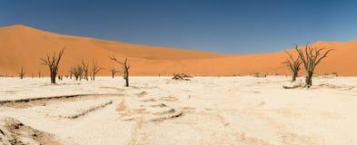 Döda Vlei av Namibia Arkivfoton