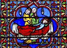 Dödkonung Stained Glass Notre Dame Cathedral Paris France Royaltyfri Bild