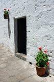 Dörröppning med ljusa blommor Arkivbild