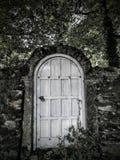 Dörr i en vägg Royaltyfri Bild