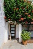 Dörr och blommande träd Arkivfoton