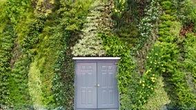 Dörr på murgrönabakgrund Royaltyfria Foton