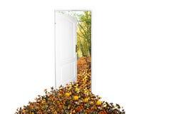 dörr som är ny till världen Royaltyfria Bilder