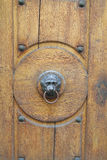 Dörrhandtag i form av en lions huvud Arkivfoto