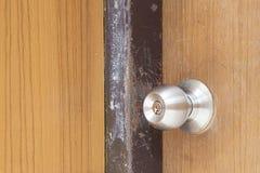 dörrknopp Arkivfoto