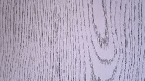 Dörrkornbakgrund Royaltyfria Bilder