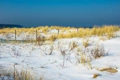 Düne in der Winterzeit in Warnemuende, Deutschland Lizenzfreies Stockbild
