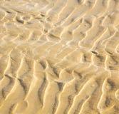 Düne Marokko im nassen Sandstrand der Afrika-Braunküstenlinie nahe atlan Stockbilder
