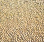 Düne Marokko im nassen Sandstrand der Afrika-Braunküstenlinie nahe atlan Lizenzfreie Stockfotos