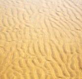 Düne Marokko im nassen Sandstrand der Afrika-Braunküstenlinie nahe atlan Lizenzfreies Stockbild